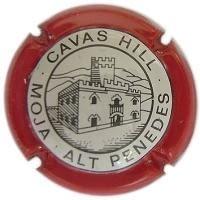 CAVAS HILL V. 0364 X. 06175