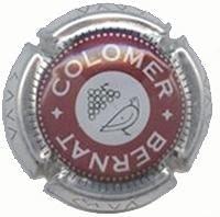 COLOMER BERNAT V. 2010 X. 02289