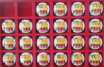 JUEGO DE 22 PIRULAS PENYA BARÇA BAGA (PLANTILLA 2010-2011)