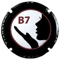 B7 V. A1017 X. 111591