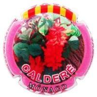 CALDERE V. 31061 X. 122424