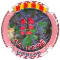 CALDERE V. 31069 X. 125941
