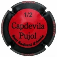 CAPDEVILA PUJOL X. 123199 (1/2 BOTELLA)