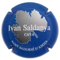 IVAN SALDANYA X. 128197