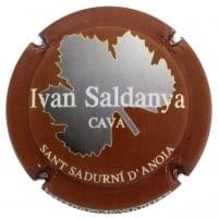 IVAN SALDANYA X. 128198