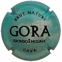 GORA IDIONDO I MOLINA X. 105594