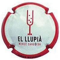EL LLUPIA X. 112522