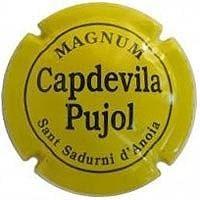 CAPDEVILA PUJOL V. 11238 X. 19356 MAGNUM