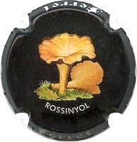 FERRET X. 120894 (ROSSINYOL)