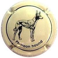 CAN RAMON X. 95119 (PHARAOON HOUND)