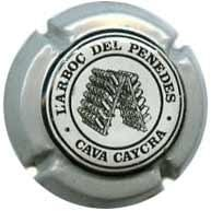 CAYCRA V. 0370 X. 02637 AMB NERVIS