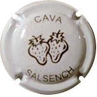 SALSENCH V. 23593 X. 90200