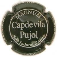 CAPDEVILA PUJOL V. 2920 MAGNUM X. 03749 VERD FOSC