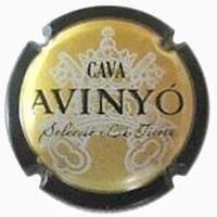 AVINYO V. 12545 X. 37115 GRAN RESERVA
