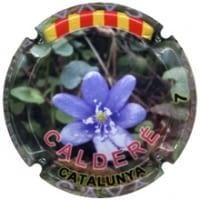 CALDERE X. 153435