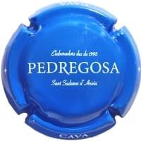 CASTELO DE PEDREGOSA X. 138840 (EDICIONS ESPECIALS)