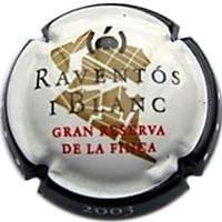 RAVENTOS I BLANC V. 11002 X. 33840 (2003)