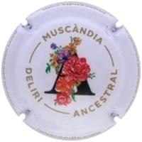 MUSCANDIA X. 148666