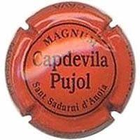 CAPDEVILA PUJOL V. 8065 X. 28903 MAGNUM