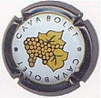 BOLET V. 2470 X. 04873 (FULLA DAURADA)