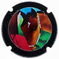 MARIA OLIVER PORTI X. 209164
