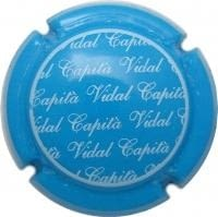 CAPITA VIDAL V. 12619 X. 40544