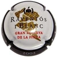 RAVENTOS I BLANC V. 11001 X. 25416 (2002)