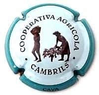 COOP. AGRICOLA CAMBRILS V. 10719 X. 34607