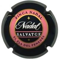 SALVATGE NADAL V. 1916 X. 00301