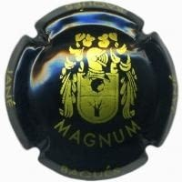 JANE BAQUES V. 10802 X. 16248 MAGNUM