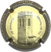 JOAN PIÑOL TORRENTS V. 14589 X. 42933