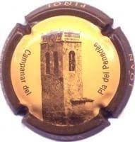 JOAN PIÑOL TORRENTS V. 15155 X. 48771