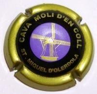 MOLI D'EN COLL V. 12993 X. 39364