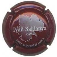 IVAN SALDANYA V. 4561 X. 14146