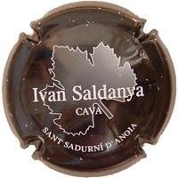 IVAN SALDANYA V. 4554 X. 09779 (LLETRES BLANQUES)