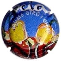 JAUME GIRO I GIRO V. 10449 X. 28463