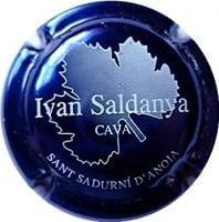 IVAN SALDANYA V. 3133 X. 01863