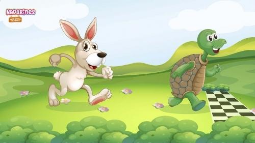 ¿Conoces el cuento de la liebre y la tortuga? ¡Neala te lo cuenta!
