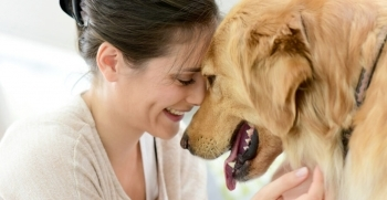 Las mascotas reducen el estrés durante periodos de confinamiento