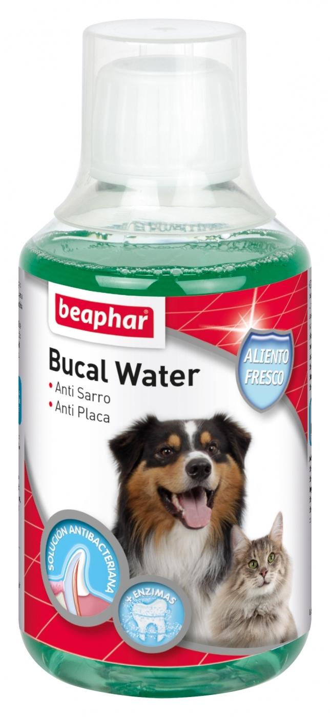 BUCAL WATER PERRO Y GATO