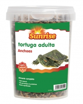 SUNRISE ANCHOAS