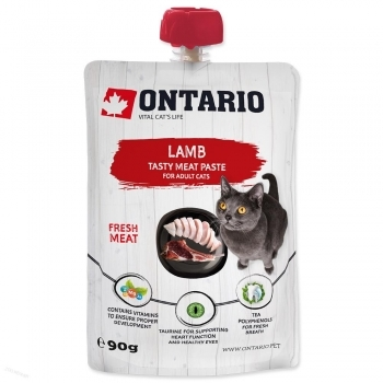 ONTARIO CAT LAMB FRESH MEAT PASTE