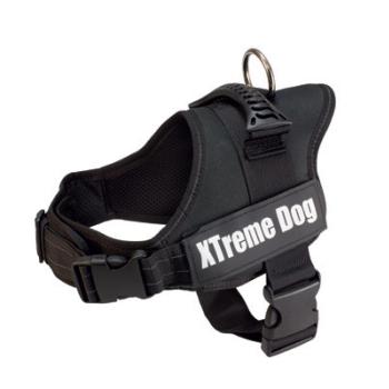 ARNES XTREME DOG NEGRO - 1