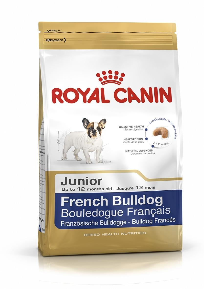 FRENCH BULLDOG 30 JUNIOR