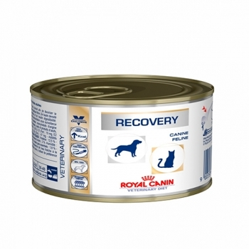 RECOVERY CANINE/FELINE
