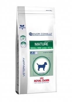 SENIOR CONSULT MATURE SMALL DOG