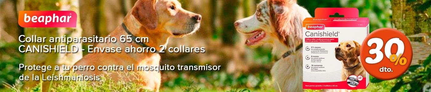 Carrusel collar antiparasitario canishield promoción