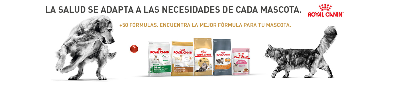 Royal Canin 1