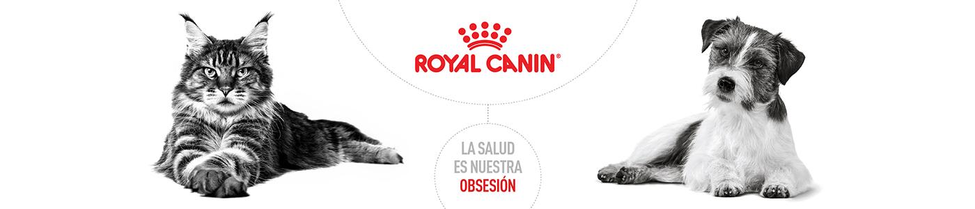 Royal Canin 2