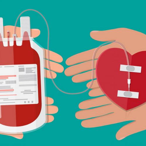 II Campaña con el Banco de Sangre i Tejidos